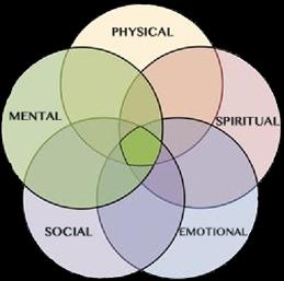 5 Wellness Categories